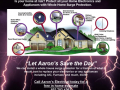 Whole Home Surge Protections